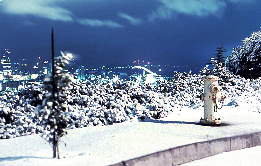 Snowy San Francisco scene