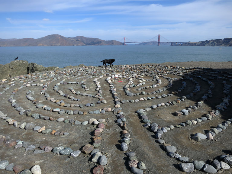 A dog walks the Labyrinth at Lands End